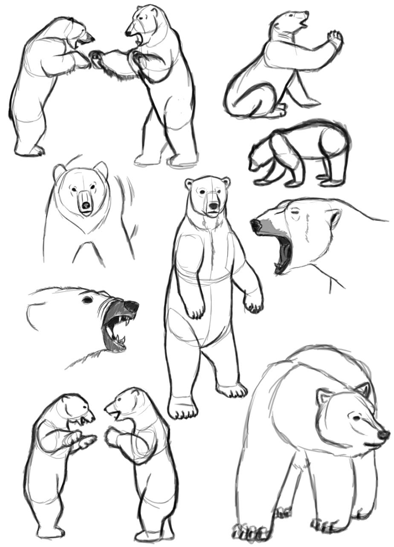 polar_bear_sketchdump_by_sagaxus-d3ni5ce